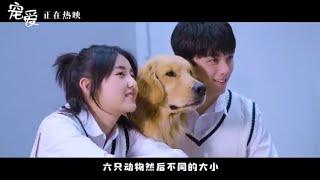《宠爱》曝光全新特辑(于和伟/吴磊/张子枫)【预告片先知 | 20200114】