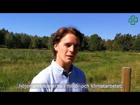 Nytt grönt ledarskap på Lidingö för miljöfrågorna