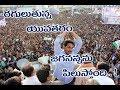 Y.S Jagan || Raguluthunna yuvatharam || video song || Prajasankalpa yatra || Rayalaseema Television