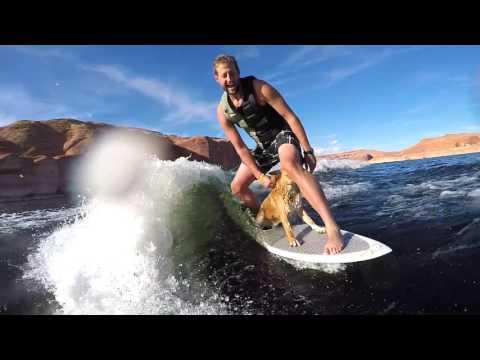 2016 Lake Powell End of Season - Dog Wakesurfing