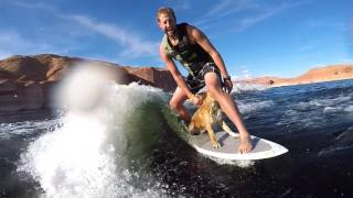 2016 Lake Powell End of Season - Dog Wakesurfing