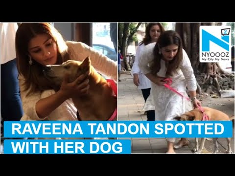 Raveena Tandon snapped struggling with her dog Mp3