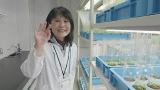 植物の研究を支える研究材料