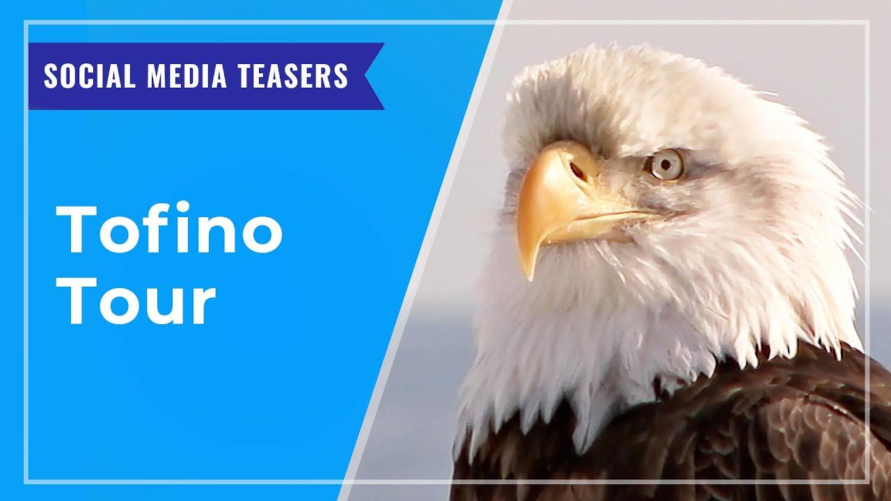 SOCIAL MEDIA TEASERS: Tofino Tour