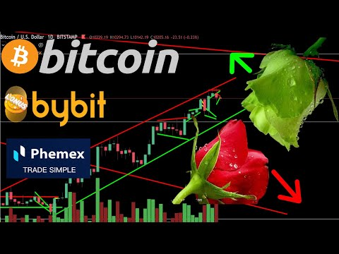 BITCOIN ₿ Valentine's Day Red Rose Or Green Rose? ¦ Bitcoin & Altcoin Technical Analysis 14,02,2020