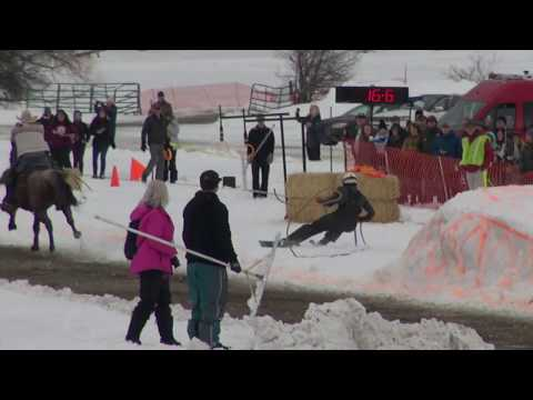 Whitefish Skijoring 2019 Day 1