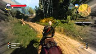 The Witcher 3 - A Poet Under Pressure: Follow Dandelion