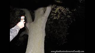 Story of a Ghost sighting at Maple Cemetery in Kirkland Illinois