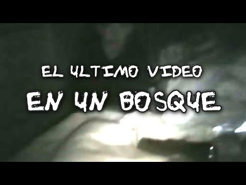 El último video en un bosque