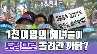 """도청 몰려 간 1천여명 해녀들, """"해녀문화 무시한 道조…"""