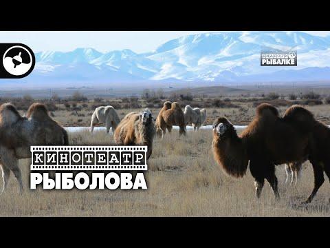 Алтай. Счастливые люди | Кинотеатр рыболова ©