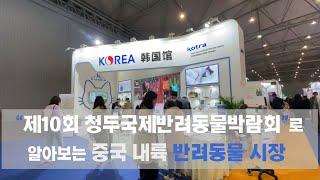 '제10회 청두 국제 반려동물박람회'로 알아보는 중국내…