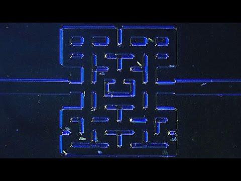 ¿Por qué estos científicos noruegos quieren que los microorganismos jueguen al Pac-Man?
