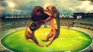 Top 10 Cricket Fights between India vs Pakistan Players Ever in Cricket History Updated 2016