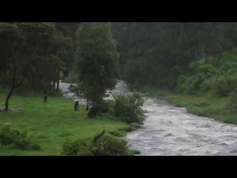 Breathtaking Mountain River in Kenya - Aberdares, Mount Kenya