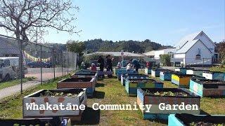 WHAKATANE Community Garden New Zealand