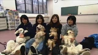 麻布大学 研究室紹介30_介在動物学研究室