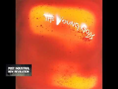 The Young Gods - L'Eau Rouge (1989) full album Mp3