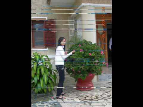 Chi Lam