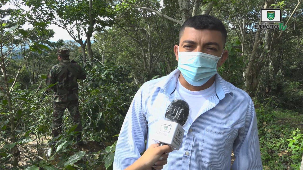 Opiniones sobre la protección y seguridad a la cosecha cafetalera en Matagalpa y Jinotega