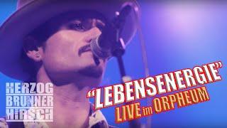 """HERZOG - BRUNNER - HIRSCH LIVE: """"Lebensenergie"""" (Orpheum 2019)"""