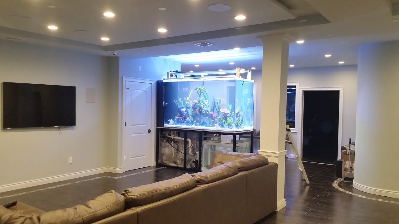 Beautiful Aquarium Design Ideas For Living Room Interior Design Youtube