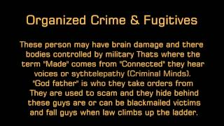 targeted individual perps