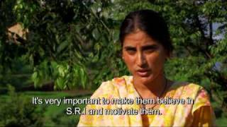 S.R.I. - Challenging Traditions, Transforming Lives