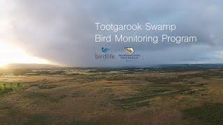 Tootgarook Swamp Bird Monitoring Program- BirdLife Australia & Mornington Peninsula Shire