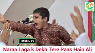 Naraa Laga k Dekh Tere Paas hai Ali | Saqlain Rizvi Sallamahu
