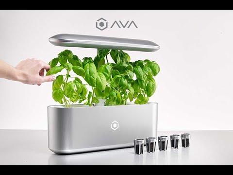 ava byte world 39 s best automated indoor smart garden get. Black Bedroom Furniture Sets. Home Design Ideas
