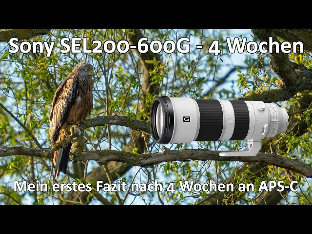 Sony SEL 200-600 G - Mein Fazit nach 4 Wochen - Handling - Zubehör - Bildqualität - Meine Meinung