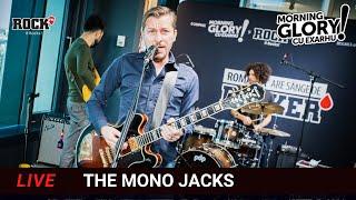 """ROMÂNIA ARE SÂNGE DE ROCKER III, The Mono Jacks- COVER """"Cântec pentru sănătatea ierbii"""""""