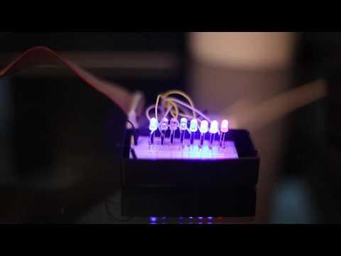 Rose Raspberry Pi Music Video