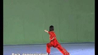 Чан цюань (32 формы) - учебный фильм.avi