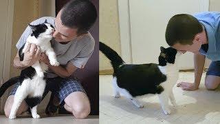 保護猫プーシクくん、久しぶりに会ったご主人に果てしない「大好き!」攻撃をお見舞いする
