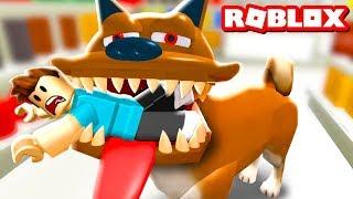 ОСТОРОЖНО ЗЛАЯ СОБАКА в ROBLOX! Игровой летсплей про собаку. Приключение от Кида #КИД