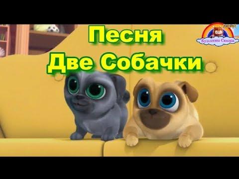 Две собачки мультфильм