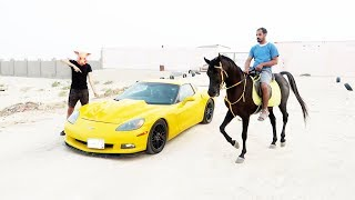 اللي يسبق الكورفت ياخذها | ( الحصان ضد الكورفت ) #2 !!