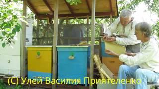 Уникальные Эффективные Ульи На Пасеке  Василия Приятеленко, Kiev, Ukraine