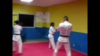 1ère serie karate contact sainte marie la reunion