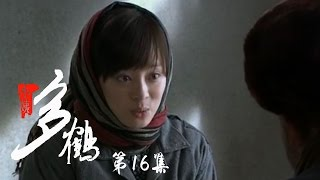 小姨多鹤 16 | Auntie Duohe 16 (主演:孙俪 姜武 闫学晶)