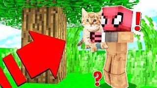 FAKİR KEDİYİ KURTARDI! 😱 - Minecraft
