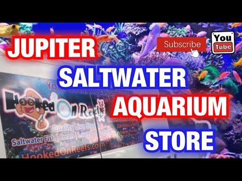 Palm Beach Aquarium Saltwater Store