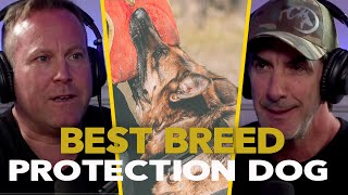 Police K9 Trainer Reveals the Best Dog Breeds for Protection Work – EP.70