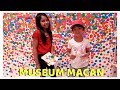 Jalan-Jalan Ke Museum Macan Jakarta! ♥ Liburan Sambil Belajar