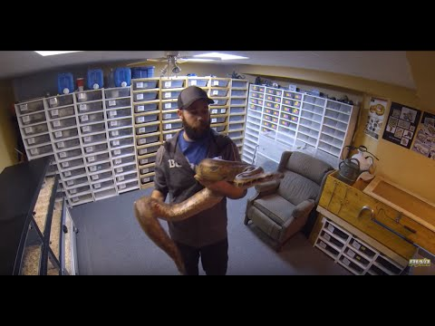 Peter Williams Reptiles Channel Trailer