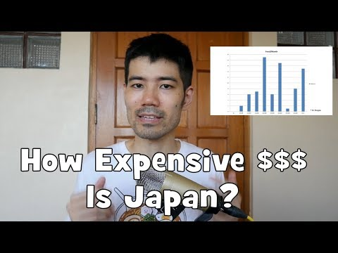 How Much Does it Cost to Live in Japan? (How Much Everybody Spends)