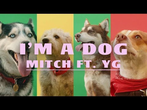 Mitch - I'm A Dog ft. YG (Official Music Video)
