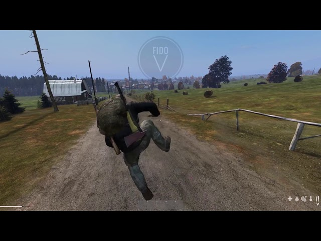 DayZ 0.63: beta animations